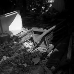 img877 (阿智) Tags: bw 120 film darkroom taiwan d76 黑白 fujiacros100 底片 暗房 沖片 rolleiflex35a
