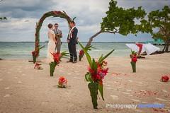 Andrew & Ellie's wedding (Dave Wilson Cumbria) Tags: vacation sun tree beach island sand paradise belize plum palm coco tropical cocoplum