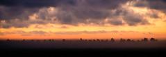 Nothings Gonna Stop Us Now (Bo47) Tags: trees sunset panorama orange fog clouds landscape denmark europe link done geotag 2012 jutland jammerbugten nordjylland brovst bo47 tamron2xteleconverter nikkor85mmf18 nikond800 bonielsen wwwjustwalkedbycom wwwbonielsenme