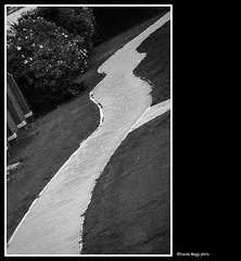 a rabbit street (magicoda) Tags: street venice blackandwhite bw italy abstract brick rabbit texture lines nikon university strada italia foto geometry candid universit bn fantasy voyeur fantasia fotografia dslr astratto venezia biancoenero geometria coniglio veneto d300 linee mattoni sanservolo 2013 blackwhitephotos magicoda davidemaggi maggidavide