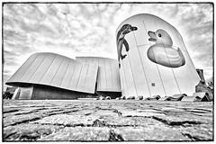 2014-10-02-Stralsund-20141002-182121-i193-p0103-_Bearbeitet1321-ILCE-6000-10_mm-.jpg