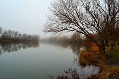 Niebla en Enero, ro Duero... (Alberto Fer.) Tags: color rio y paisaje valladolid leon invierno niebla castilla duero tordesillas