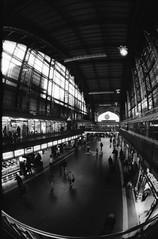 Hamburg (Lassehn41) Tags: blackandwhite film fisheye trainstation 16mm zenitar16mm zenitem