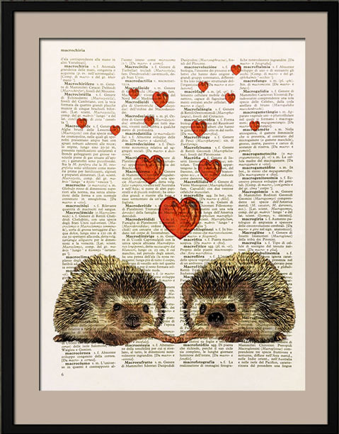 The World's Best Photos of dictionarypage - Flickr Hive Mind