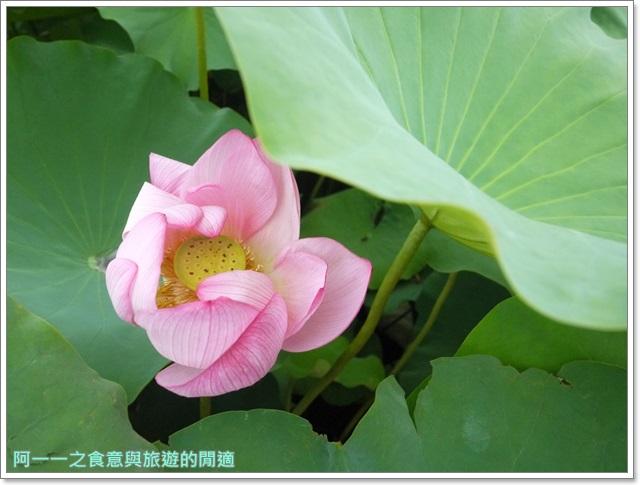 東京自助旅遊上野公園不忍池下町風俗資料館image017