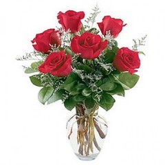 "#03V $45 Standard $55.95 Deluxe 1/2 Dozen Roses Vased • <a style=""font-size:0.8em;"" href=""http://www.flickr.com/photos/39372067@N08/16201672895/"" target=""_blank"">View on Flickr</a>"