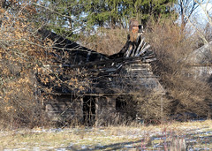 Ruins (Lunken Spotter) Tags: wood trees houses roof winter ohio chimney house building tree brick abandoned overgrown rural buildings countryside wooden weeds ruins exploring bricks structures structure explore abandonedhouse oh wintertime exploration derelict grown overgrowth ruined collapsed abandonedbuilding duvall ruralohio