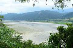 Beinan River 1 (Bob Hawley) Tags: trees mountains forest landscape outdoors asia taiwan rivers taitung valleys liji nikon1755f28 nikond7100 beinantownship beinanriver