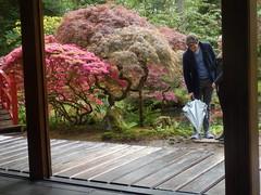 Japanese Garden-029 (Quetzalcoatl002) Tags: people standing umbrella garden japanesegarden couple zen horticulture thehague clingendael japansetuin