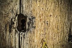 Recndito (Ignacio M. Jimnez) Tags: door wood espaa spain puerta madera lock andalucia jaen andalusia cerradura ubeda