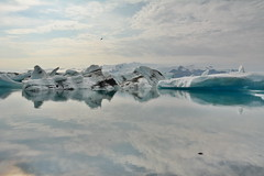 jokulsarlon (Rafa perena) Tags: paisajes naturaleza ice nature iceland islandia nikon paradise glaciar hielo lanscapes jokusarlon nordico d7100