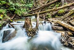 Herald Provincial Park (Michael Raap Photography) Tags: park herald provincial bcparks heraldprovincialpark explorebc