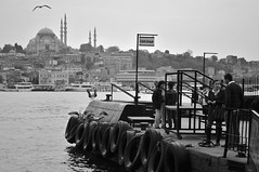 Waiting (ilmikadim) Tags: people blackandwhite bw black bird standing port turkey grey coast seaside waiting seagull istanbul mosque sleymaniye monocrome