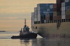 Justice (jelpics) Tags: ocean sea boston port harbor boat justice ship massachusetts vessel barbara tug containership bostonma tugboats bostonharbor cargoship massport merchantship commercialship conleyterminal