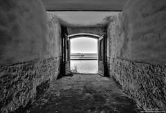 Porto vecchio (-Andreyes- www.andreabastia-photo.com) Tags: photo andrea bn porto biancoenero trieste bastia vecchio abbandono friuliveneziagiulia wwwandreabastiaphotocom