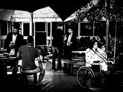 wisdom (Ran Elmaliach) Tags: blackandwhite white black monochrome lines photography israel blackwhite background surreal gr wisdom ricoh ricohgr strret ranelmaliach