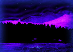 starry starry night (calamityjan2008) Tags: ocean blue trees sky mountains night purple nightscene invert photopainting blueandpurple starrystarrynight photoartnight