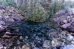 20160627-15-Disappearing Tarn (Roger T Wong) Tags: water outdoors rocks walk australia hike scree tasmania hobart mtwellington bushwalk tramp 2016 wellingtonpark dolerite disappearingtarn sony2470 rogertwong sel2470z sonyfe2470mmf4zaosscarlzeissvariotessart sonya7ii sonyilce7m2 sonyalpha7ii