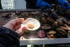 Viking sushi (Fjola Dogg) Tags: sea summer naturaleza nature canon landscape island iceland islandia natureza natur natuur natura nopeople atlanticocean ísland náttúra islande izland haf islanda lanature evropa islândia naturen ijsland 50d naturae naturalesa islanti breiðafjörður islando westiceland canon50d vesturland evrópa izlanda sæferðir atlantshaf lislande fjoladogg northernatlanticocean ãsland fjóladögg islann vikingsushi