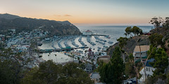 Avalon harbour, Catalina island, California (Paul Woods Music & Event Photography) Tags: catalina california tourism panorama avalon island ca harbour boats sunset