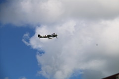IMG_1981 (steve263) Tags: spitfire hurricane royal welsh