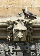 Stone Face, Southwark Cathedral, London, England (Amethinah) Tags: 2013 uk unitedkingdom greatbritain england london southwark cathedral southwarkcathedral stonecarving gargoyle downspout pigeon