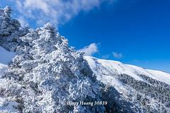 Harry_30839,,,,,,,,,,,,,,,,,,,,,,Hehuan Mountain,Taroko National Park,Snow,Winter (HarryTaiwan) Tags:                      hehuanmountain tarokonationalpark snow winter mountain     harryhuang   taiwan nikon d800 hgf78354ms35hinetnet adobergb