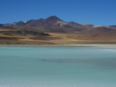 Laguna Tuyajto (Mono Andes) Tags: andes chile regindeantofagasta punadeatacama altiplano laguna lagunatuyajto desierto
