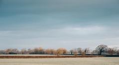A frozen morning (aecclesphoto) Tags: trees winter sky cold clouds landscape nikon 85mm fields d3 preset vsco vsco06