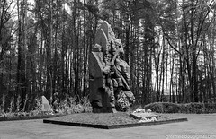 DSC_1707_LR4 (Photographer with an unusual imagination) Tags: ukraine zhitomir oblast  2013  zhytomyr    zhytomyrska