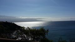 20141109_093859 (dntanderson) Tags: hawaii maui 2014 november09