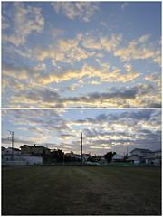 2008/12/15 16:03 Fujisawa (Masayo Nabeshima) Tags: morning sunlight nikon d3