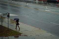 DSC_0108 (justindenney) Tags: california street winter fall film coffee girl rain umbrella 35mm canon photography 50mm photo cozy nikon kitlens fave 55mm starbucks rainy 24mm 1855mm puddles thirdsrule 45mm csulb ae comment thirds 18mm focuspoint tiltshift lbcc fakk d3200 nikonphotography instagram