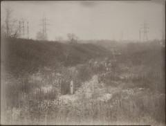 (NooFZz) Tags: bw landscape largeformat 9x12 photographicpaper paperpositive bulldog4x5