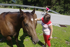 Horses, Woman, and Rider (David J. Greer) Tags: road red summer horses horse woman pet mountain mountains alps weather bike austria high nice women ride pants outdoor top altitude ears blond ear rider alp tyrol pant tyrollean