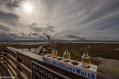 Plants Of The New Chicago Marsh (tourtrophy) Tags: plants boardwalk marsh alviso southbay marshland santaclaracounty marshlands donedwardswildliferefuge californialandscape landscapephotography plantsofthenewchicagomarsh
