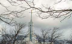 DSC_1860 (d.licorice) Tags: saint composition temple utah ut day mt perspective fork mount american frame timpanogos mormon framing lds latter