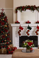 Poinsettia flower centierpieces with candles on mantel over fireplace with stocking hung next to Christmas tree with gifts underneath an ottoman with a holiday floral bouquet on it with poms and mums (ProFlowers.com) Tags: christmas house holiday flower tree home floral pine table fireplace decoration wreath decorating gift cutting present decor mantle clipping mantel