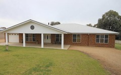 80 Saines Road, Young NSW