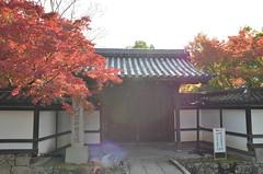 Jpn_09_12112014_039 (henrylim1974) Tags: autumn japan nikon kyoto sigma d7000