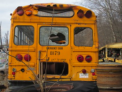 National School Bus Service #8179 (1) (ThoseGuys119) Tags: old newyork rotting junk shed storage historic schoolbus damaged retired scrap conventional defunct laidlaw thomasbuilt firststudent fordb700 nationalschoolbusserviceinc nochassis