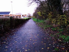 Autumn Path (LookaroundAnne) Tags: autumn coventry pathscaminhos