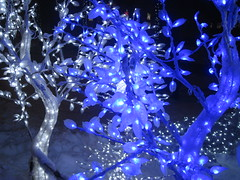 Merry Christmas and Happy New Year! (VERUSHKA4) Tags: lighting christmas new city blue winter light holiday tree love beautiful leaves night canon dark evening europe december view russia moscow album branches year dream explore verushka hccity