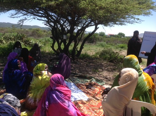 ISTVS data collection from the PRA questionnaire in Sheikh (Somaliland) with femal community members