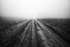 some ways lead nowhere (koaxial) Tags: bw white black fog way nebel path olympus schwarzweiss weg mantiuk koaxial epl5 pb301057p1mantiuka