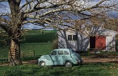 gidday (paddy_bb) Tags: travel newzealand tree car barn farm 1990 neuseeland paddock paddybb