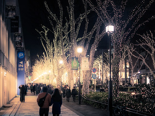 Omotesando avenue on Christmas night