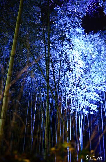 嵐山花燈路-竹林之道07.jpg