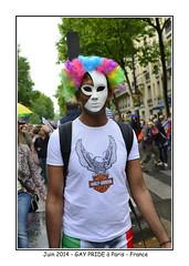 2014-06-GayPride-429w (BELHASSEN Gerard) Tags: gay paris france sex lesbian yahoo costume google riviere pride parade lgbt carnaval homo sexual gerard lilou defile 2014 travesti culturel salee deguisement belhassen fierte