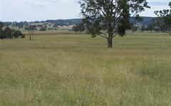 * Ruwenzorie Road, Glen Innes NSW